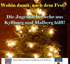 Wohin mit dem gebrauchten Weihnachtsbaum?